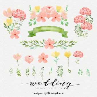 Cute watercolor elements