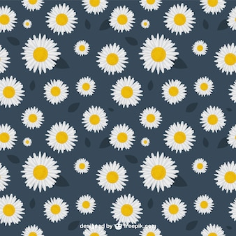 Daisies pattern