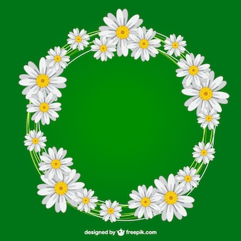 Daisies wreath vector