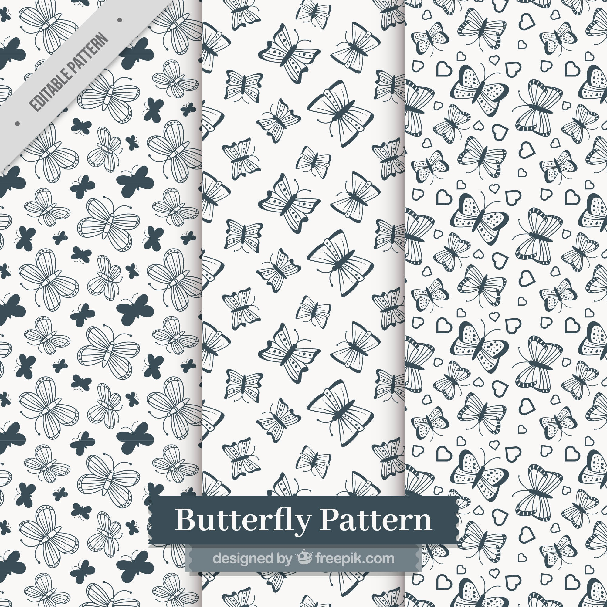 Dark blue patterns of butterflies
