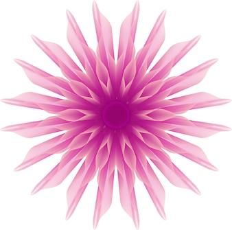 Dazzy flower