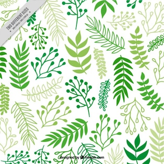 Decorative background of hand drawn green leaves