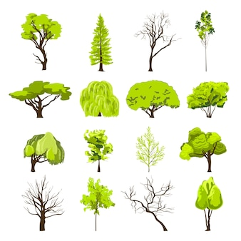 Decorative deciduous foliage and conifer forest park trees silhouette abstract design icons set sketch isolated vector illustration