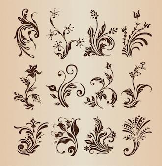 Decorative floral design vector collection