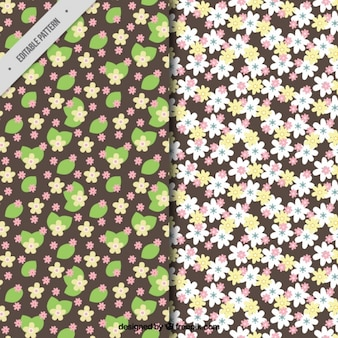 Decorative flowers patterns in flat design
