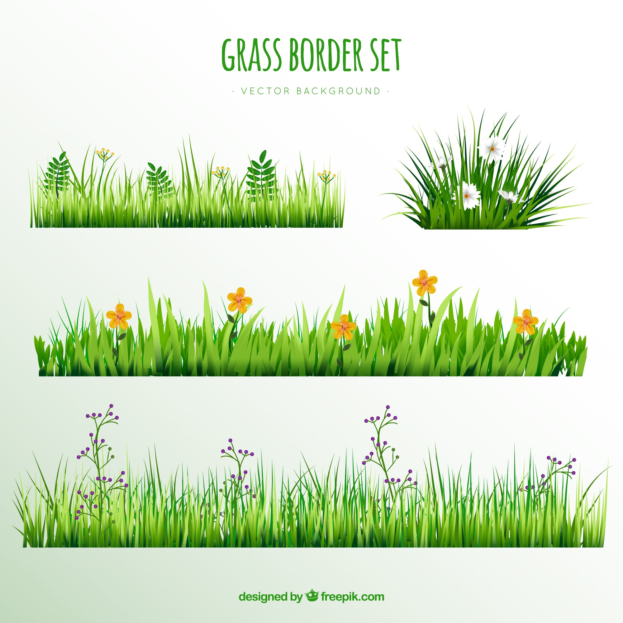 Decorative grass borders with pretty flowers