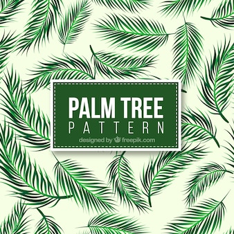Decorative pattern of realistic palm tree leaves