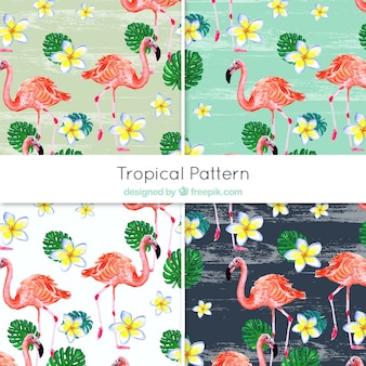 Decorative patterns of flamingos and watercolor flowers