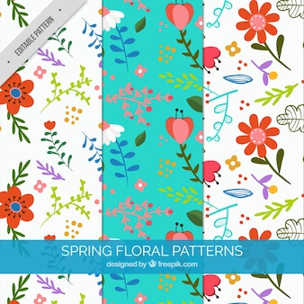 Decorative spring patterns with beautiful flowers