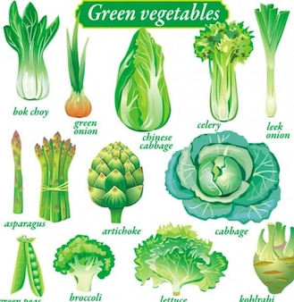 Delicate vegetables pack vector set
