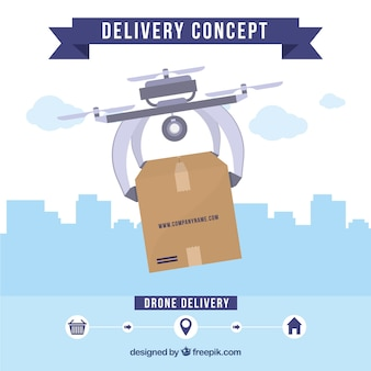 Delivery dron and skyline