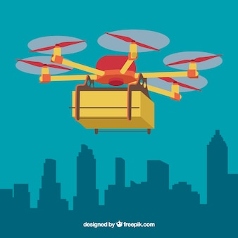 Delivery drone and the city