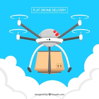 Delivery drone with lovely style