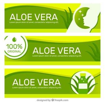 Design of aloe vera banner