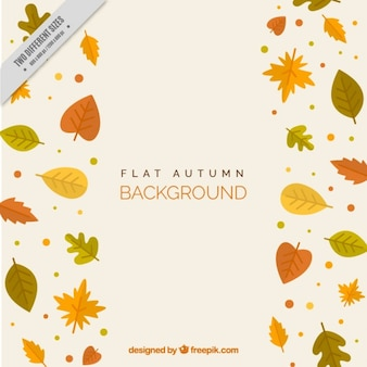 Different autumn leaves, background