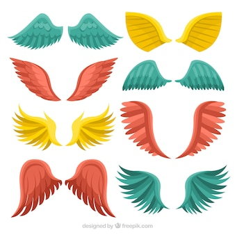 Different colored wings