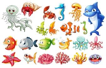 海の動物の異なる種類の