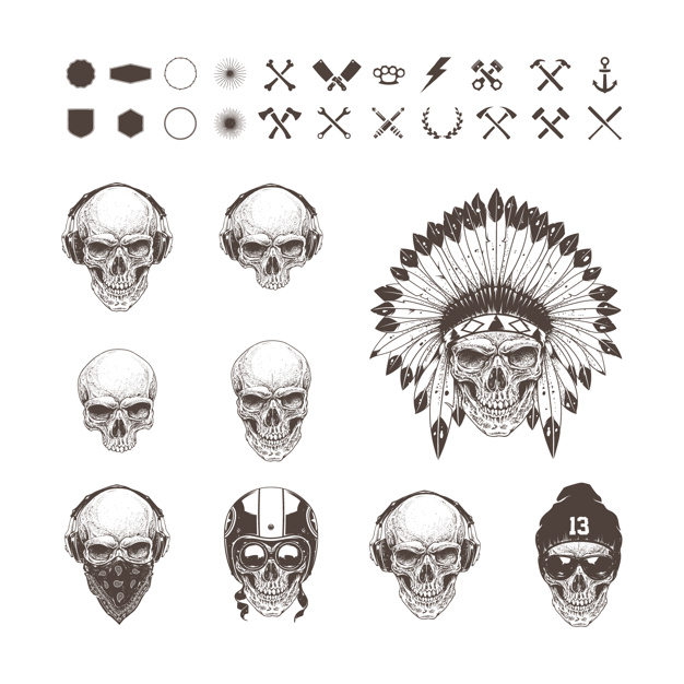 Different skulls collection