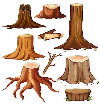 Different stump trees on white background illustration