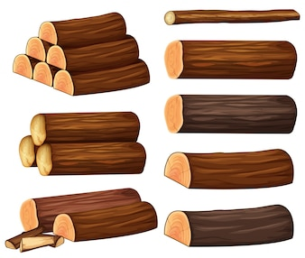 Different types of woods illustration