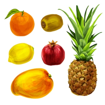 Different watercolor fruits