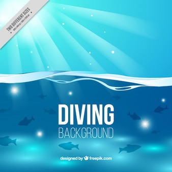 Diving background with fishes and sun