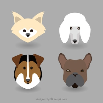 Dog breed avatar flat collection