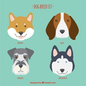Dog breed set in a flat design