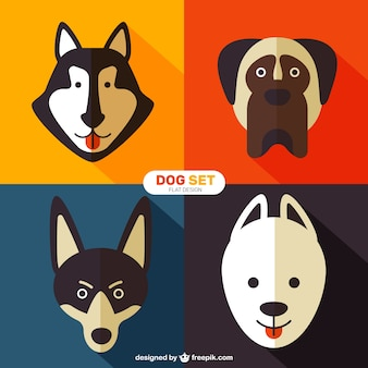 Dog breeds in flat style
