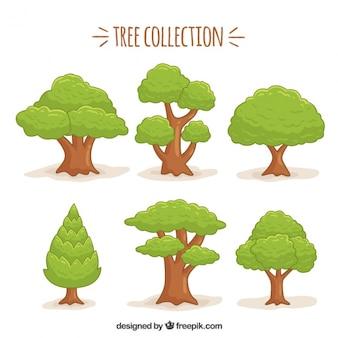 Drawn tree set