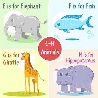 E to h animals collection