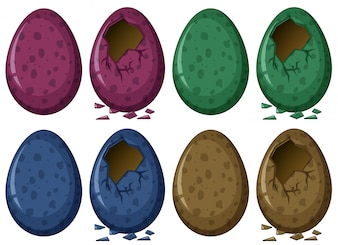 Eggs in four colors