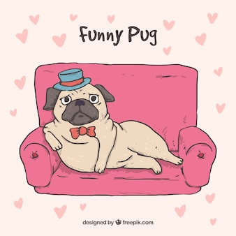 Elegant pug concept with hand drawn style