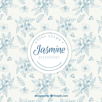 Elegant vintage hand drawn jasmine background