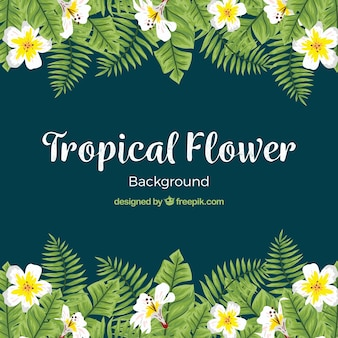 Elegant water color tropical flower background
