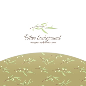 Elegant white background with olive leaves