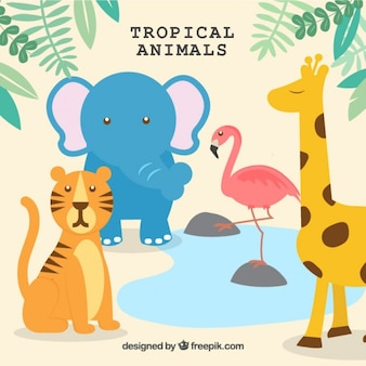 Enjoyable wild animals set