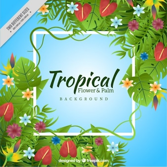 Exotic flowers and leaves background