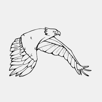 Exotic flying bird illustration