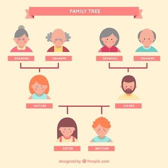 Family tree set in flat design