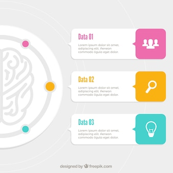Fantastic brain infographic with color details