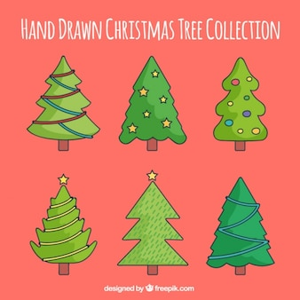 Fantastic collection of fir trees for christmas