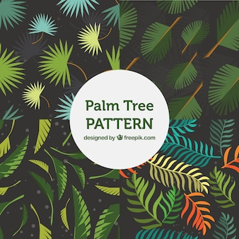 Fantastic patterns of palm tree leaves