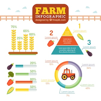 Farm infography in flat style
