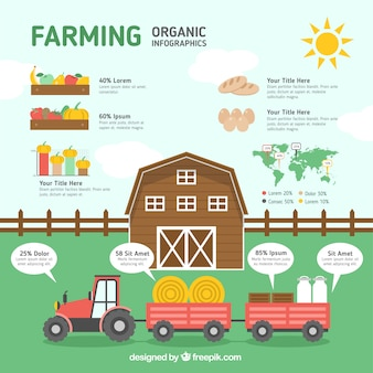 Farm with organic infographic elements