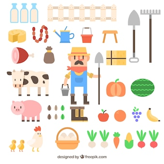 Farmer with farm accessory collection in flat design