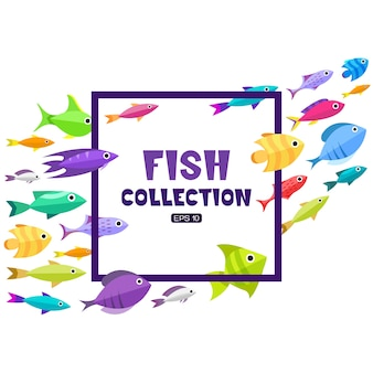 Fish frame background