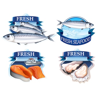 Fish logo templates collection