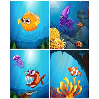 Fishes illustrations collection