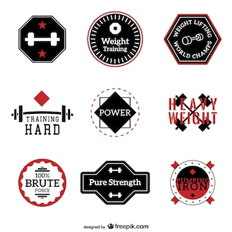 Fitness and training labels vector collection